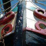 Lagune; Lagune von Grado; Grado; Adria See; traditionellen Boot der nördlichen Adria
