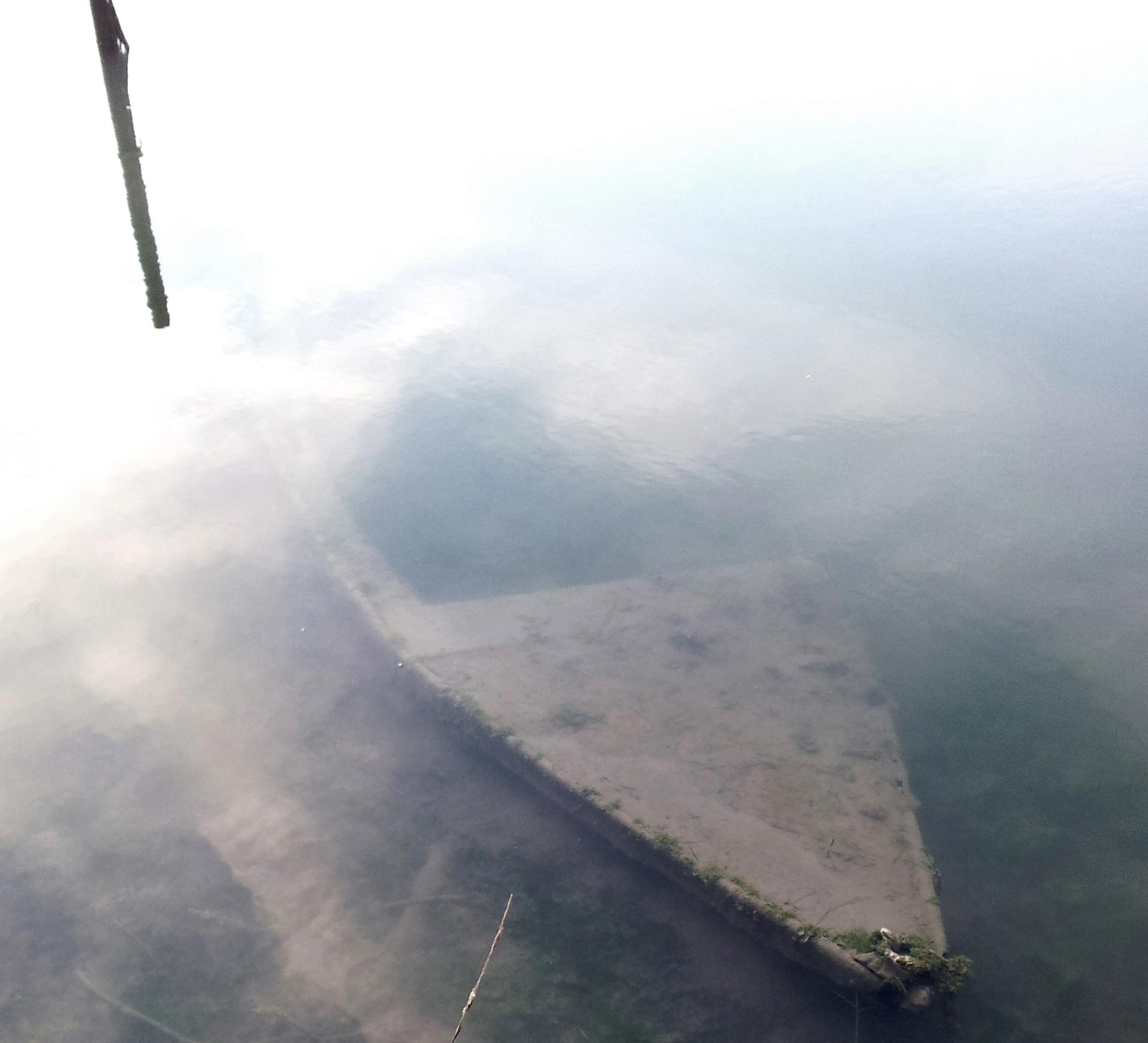 laguna; fondali; laguna di Grado; documentario sulla laguna di Grado; die Lagune von Grado; Friuli Venezia Giulia;