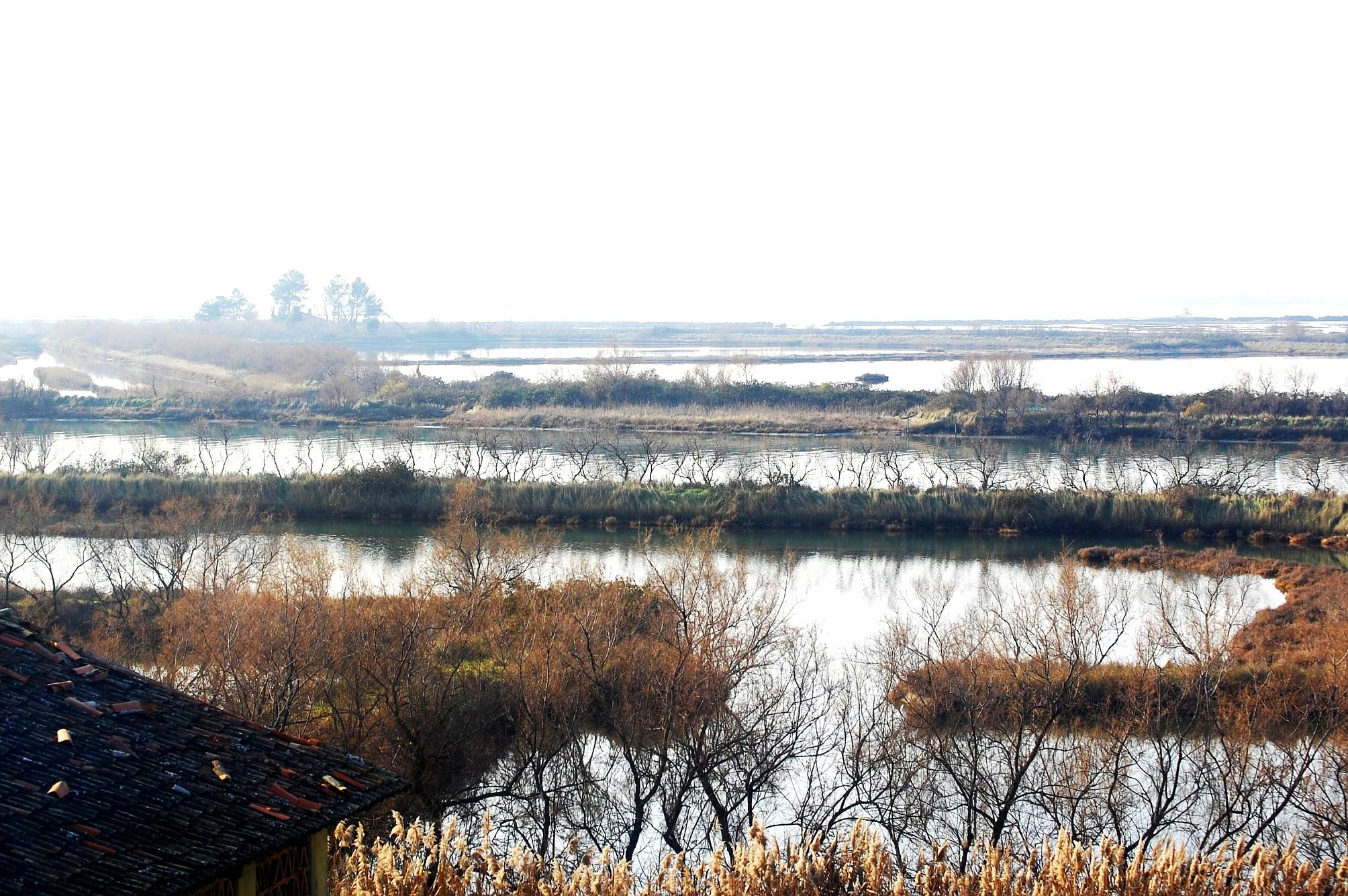 laguna; laguna di Grado; san Giuliano; die Lagune von Grado; Grado lagoon; Friuli Venezia Giulia;