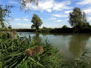 Friuli Venezia Giulia; anfora; canale anfora; Aquielia; Grado; Laguna di Grado; lagune