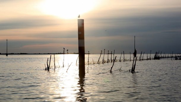 laguna; laguna di Grado; Grado; lagunadoc; Friuli Venezia Giulia;