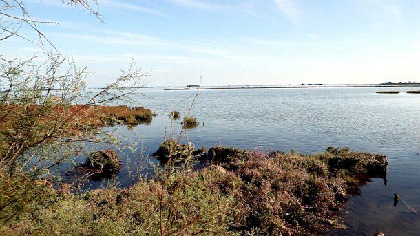laguna; laguna di Grado; Grado; Lagune von Grado; lagoon; Friuli Venezia Giulia;