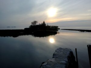laguna; mota; Grado; laguna; documentario laguna di Grado; Lagune von Grado; lagoon; Friuli Venezia Giulia;