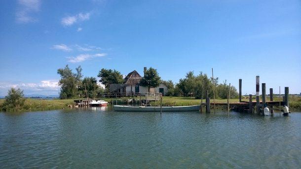laguna; canna; casone in laguna di Grado; laguna di grado; caneo; Friuli Venezia Giulia;